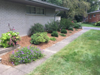 landscaping Photo Gallery gallery 12 200x150